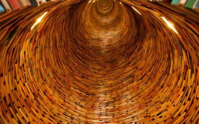 Interne kennis opslaan, structuren en verdelen